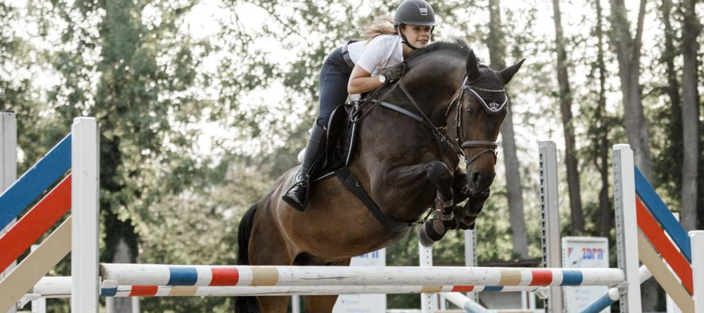 Pferdefreunde Wilferdingen e.V.